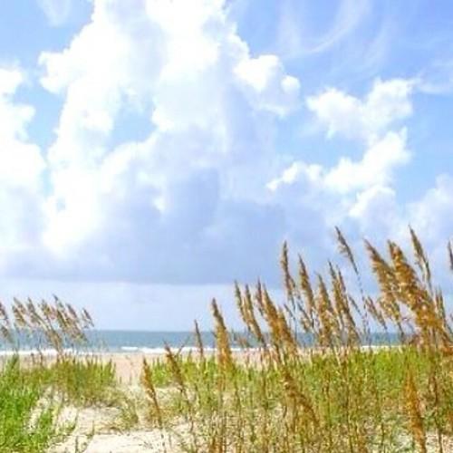 Money Island Atlantic Beach Nc