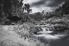 _DSC3673 (edu_420) Tags: naturaleza rio mono ecuador arboles cielo construccion exposicion larga orilla amaguaa