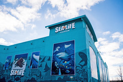 SeaLife Aquarium Great Lakes Crossing (Nicholas Eckhart) Tags: usa retail mi america mall aquarium us auburn sealife hills massive former stores outlets reuse greatlakescrossing gameworks outletmall 2016