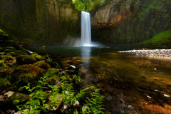 Spring Break (wuman88) Tags: fern waterfall moss spring oreon abiqua