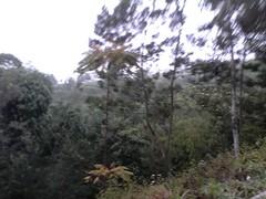 "Pengembaraan Sakuntala ank 26 Merbabu & Merapi 2014 • <a style=""font-size:0.8em;"" href=""http://www.flickr.com/photos/24767572@N00/27094481771/"" target=""_blank"">View on Flickr</a>"