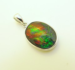 NEW ARRIVAL (The Ammolite) Tags: fossil   ammolite ammonite rock mineral minerals gemstone pendant jewelry jewellery