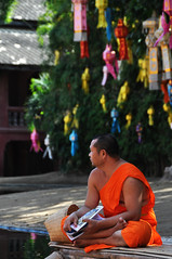 distracted (Rising Damp) Tags: monk thailand meditation distracted lanterns chiangmai crosslegged temple buddistmonk buddhism orange orangerobe