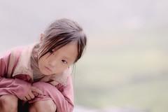 A Girl (Tonnaja Anan Charoenkal) Tags: life children landscape photo nikon rice image terrace album harvest picture vietnam northern sapa traval d700 tonnaja anancharoenkal