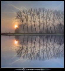 The Mirror (Erroba (feeling very sick)) Tags: trees mist water fog sunrise canon reflections belgium belgique belgi symmetry erlend muizen 24105mm 60d erroba robaye masterclasselite