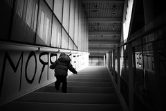 Curiosity (sparth) Tags: seattle leica 30 stairs 35mm october downtown child voigtlander daughter climbing 12 35 escalier m9 2011 olympicscuplturepark voigtlander35mm12 leicam9