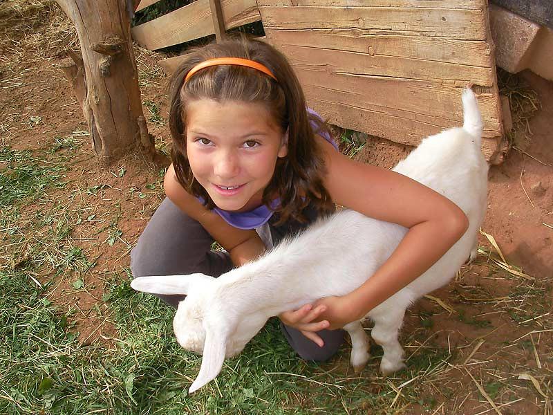 Kastanienhof Selz - Mädchen streichelt Ziege