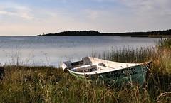 Saaremaa (Gatodidi) Tags: mar estonia barca paises saaremaa balticos photosandcalendar panoramafotogrfico