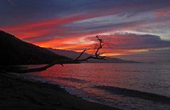 and the day begins (bluewavechris) Tags: ocean sea sky mountain color tree beach water clouds island volcano hawaii sand scenic wave maui