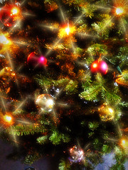 Starry (aistora) Tags: christmas light tree art photoshop lens stars lights design shiny glow shine decoration kitsch christmastree elements flare plugin process postprocess edit decorated maistora effectfilter