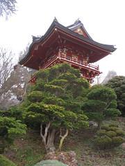 IMG_2138 - SF Japanese Tea Garden (tend2it) Tags: park trees usa nature colors garden japanese golden pagoda gate san francisco tea catchy