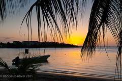 West End Sunset (Ron Scubadiver's Wild Life) Tags: sunset sea beach palms nikon honduras tropical roatan