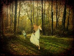 pagan dance (florence.V) Tags: france texture nature photoshop automne fairy arbres fe 62 nord pasdecalais ferie blendeques leslandesdeblendecques
