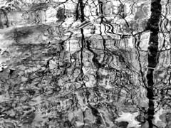 Light&Ice_2011-12_(127) (rverc) Tags: reflections newjersey wetlands livingston