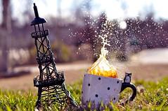 (Candice Elizabeth) Tags: new winter sunset sun france tower fall cup coffee grass set 50mm golden nikon cookie elizabeth bokeh year eiffel hour owl mug pairs splash f18 candice d90