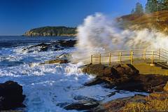 Acadia National Park (Greg from Maine) Tags: ocean vacation seascape nationalpark maine barharbormaine acadia mountdesert barharbor mountdesertisland mdi acadianationalpark thunderhole ottercliff oceanscaoe