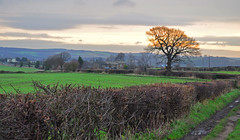 rural winter view (littlestschnauzer) Tags: uk winter sky cold west tree rural landscape grey countryside nikon track day village view farm bare yorkshire january hills fields lone farms 2012 distant hedgerow emley d5000