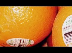 LS 365 - Day 351 (P40MAN/John) Tags: 365 oranges picnik