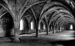 The Cellarium (@john00taylor) Tags: bw heritage abbey yorkshire unesco fountains hdr studley
