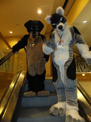 2012-FC-DeadDog-50 (thump45a) Tags: furry sanjose 2012 deaddog furtherconfusion fc2012
