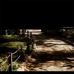 - a stroll down the lane ii (Chez C.) Tags: park light sunlight tourism beautiful garden hongkong pagoda alley scenery ray shadows lotus chinese olympus lane destination stroll nunnery chilin  nanliang   epl2