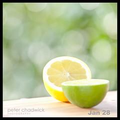 Lime and Lemon {28-366} (PeterChad) Tags: winter summer food sunshine fruit wonder lemon bush soft pretty dof fresh eat telephoto health softfocus citrus lime diet gin tonic fibre fillinflash bokey bej