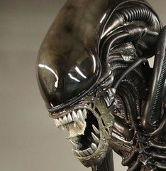 Alien Movie Fullsize alien movie prop