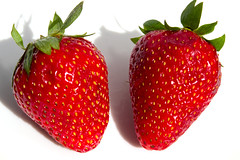 Pair beautiful ripe strawberry (cluckva1) Tags: red food white macro green nature beautiful up closeup fruit cutout studio dessert leaf juicy healthy strawberry berry perfect raw close natural bright sweet good juice vibrant background vivid tasty fresh delicious eat health vegetarian organic diet edible fruity isolated freshness ripe nutrition tempting refreshment vitamin appetizing
