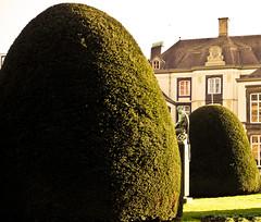 The lucky capture of a peeking statue. (Bas Tadema) Tags: old building green groen gras huis oud standbeeld glurend