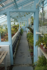 Darwins Greenhouse (Mal 1005) Tags: blue darwin greenhouse skyblue downhouse propagation