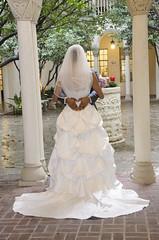 wedding_11 (Truly Priceless) Tags: roses cake groom tears smiles couples kisses brides sacramento weddingdress blushingbrides trulypricelessphotography