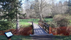 20160331_090746 (ks_bluechip) Tags: creek evans trails preserve sammamish usa2106