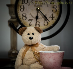 Perhaps it is time for tea (HTBT) (13skies) Tags: bear brown clock face hands time tea drink relaxing teddybear tuesday hours teacup minutes timing teddybeartuesday happyteddybeartuesday