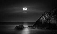 Moonlight (Karl P. Laulo) Tags: longexposure moon norway norge nightshot moonlight arendal hasla haslatangen