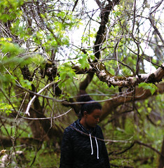 (deymanabukar) Tags: trees nature girl forest canon expansion t1i
