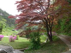 Garden at the headquarter (Daniel Brennwald) Tags: museum garden northkorea dprk militarymuseum kimilsung nordkorea koreawar pyongsong militarysite