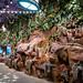 an indoor jungle...