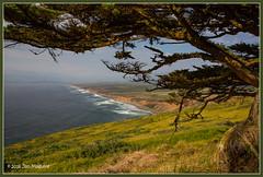 Pt Reyes 6947 (maguire33@verizon.net) Tags: california sea us unitedstates pacific wave pacificocean inverness pointreyesnationalseashore