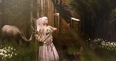 Light of the Earth (roxi firanelli) Tags: go doe enchantment belleza sys pervette thesecretaffair theplastik warmanimations comesoonposes