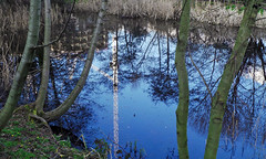 London N1 - A Reflective Index (hornbym) Tags: ecology ecopark