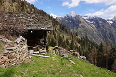 Alpe le Piane (Marco MCMLXXVI) Tags: rivavaldobbia valsesia piemonte italy alps alpi mountains mountain mountainside montagna escursionismo hiking outdoor travel tourism spring house architecture alpine grassland ridge baita alpeggio sony a6000 sooc scenery