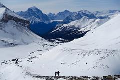 Skiing to Packer's Pass Peak (*Andrea B) Tags: park winter lake ski mountains rockies march tour pass rocky peak canadian packers louise national banff skokie skitour 2016 march2016 packerspasspeak