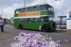 IMGP3482 (Steve Guess) Tags: uk england bus bristol southern vectis dorset gb poole ld lodekka