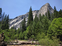 In the valley (huw-ogilvie) Tags: trees cliff forest rockface valley yosemite