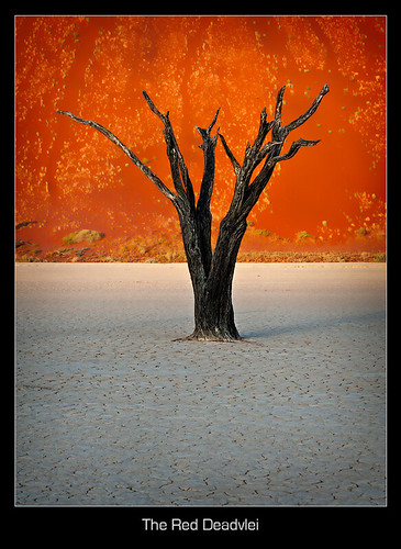 The Red Deadvlei
