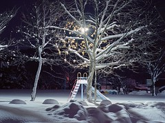 Playground for fairies (threepinner) Tags: winter light snow mamiya japan night iso100 645 hokkaido north negative    yayoi hokkaidou 1000s mikasa ektar  selfdevelopment northernjapan  stoeckler  gettyimagesjapanq4