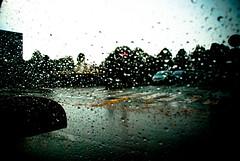 rainy window (Insane Focus) Tags: city urban art window wet car rain hail shower photography glasses town photo insane nikon focus photographer place image artistic pics snapshot picture center snap drop used drip bead blob splash pane tot ville gout nip lige burgh dropping dram minim belgiulm insanefocus photographicshot