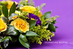 Wedding Florist Palo Alto, Yellow and Purple Arrangements (Signature Bloom) Tags: pictures flowers wedding decorations flower floral rose yellow for design purple designer events sanjose images reception designs florist vendor siliconvalley weddings bridal decor peninsula southbay ideas weddingflowers weddingphotos arrangements floraldesign sanjoseca florists specialevents centerpieces 94301 weddingideas bridalflowers solidago summerwedding weddingdecorations matsumotoaster yellowandpurple floraldesigner flowerdesign springwedding receptionflowers 95121 hypericumberry weddingflorist receptionideas weddingfloral weddingvendor yellowandpurplewedding flowersforwedding sanjoseflorists sanjoseweddingflowers signaturebloom wwwsignaturebloomcom sanjoseweddingflorist bridalflorist weddingfloristsanjose weddingflowerssanjose weddingflowerssanjoseca weddingfloristpaloalto paloaltoweddingflowers sanjoseweddingfloral weddingfloralsanjoseca paloaltoweddingfloral weddingflowerspaloalto weddingflowerspaloaltoca paloaltoweddingflorists yellowandpurpleweddingideas yellowandpurpleweddingcenterpieces