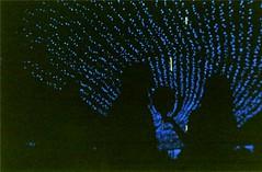 img004 (ana.bea) Tags: blue light shadow night lomo sardina iso shade 200 fujifilm