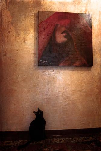 muro texture casa quadro pepe rosso colori gatto nero... (Photo: Simona Pellegrini on Flickr)